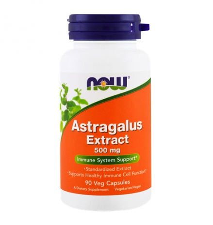 Astragalus Extract 500 mg 90 vcaps