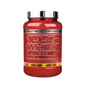 100% Whey Protein Professional 920g + 20% Free = 1110g